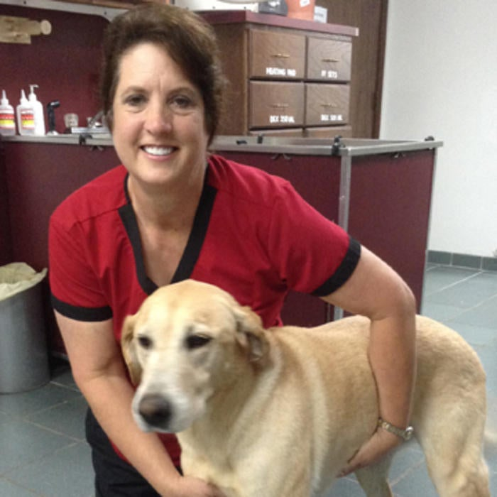 Dr. Carolyn Williams photo